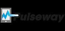 Case Study: Pulseway Mobile App
